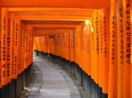10,000 shrines all over the paths - Picture of Fushimi ...