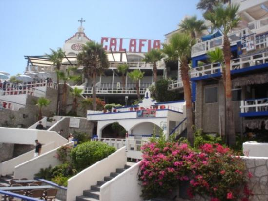 Rosarito Mexico The Calafia Hotel Where We Stayed