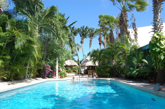 Paradera, Aruba: Swimming Pool