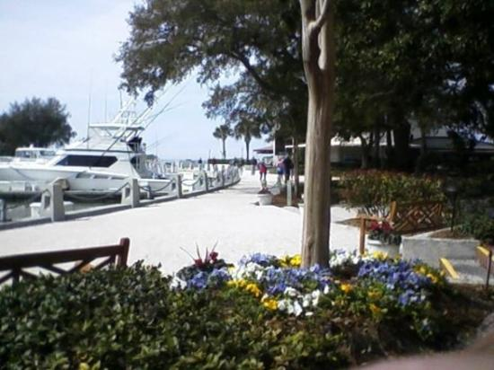 how to get to harbour town hilton head