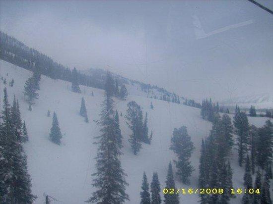 Jackson Hole Mountain Resort: in the gondola... how pretty!