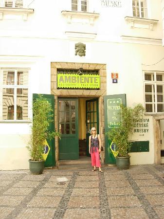 Hotel U Tri Bubnu: By the entrance
