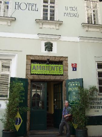 Hotel U Tri Bubnu: Entrance to the hotel