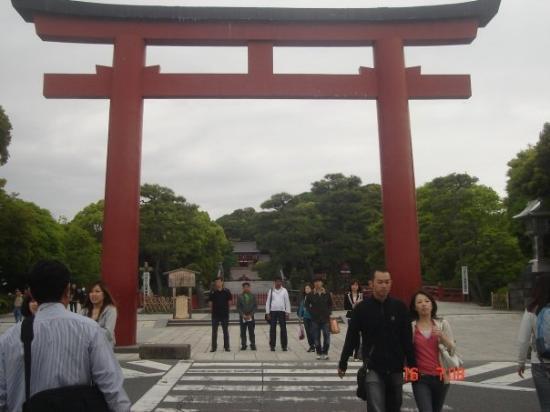 Tsurugaoka Hachimangu Shrine: @ Hachimangu...