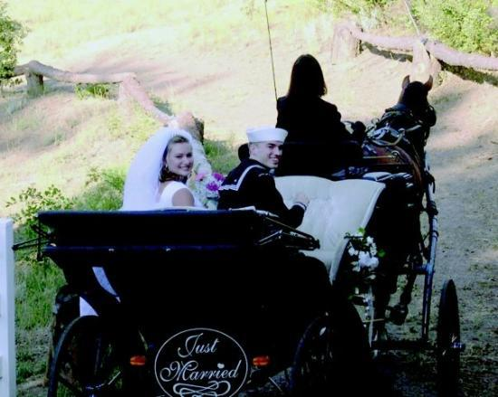 Angels Landing Country Inn and Resort: Just Married