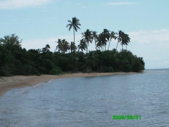 Foto de Isla de Vieques