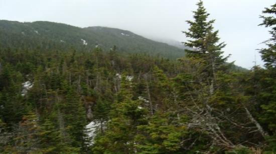 Mount Marcy Bild