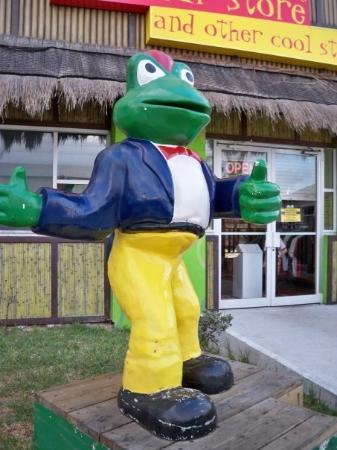 Senor Frog's Nassau ภาพถ่าย