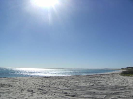 Resultado de imagen para Coral Bay – Australia Occidental.