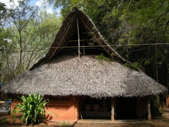 Inside The Hut  Auroville