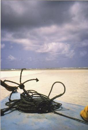 Watamu Beach: Kenia - Malindi - Settembre 2004 Verso la barriera corallina.