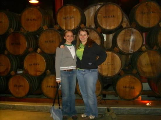 Christian Brothers Near Me >> Me And Jenny At Christian Brothers An Old Winery That Is Now A