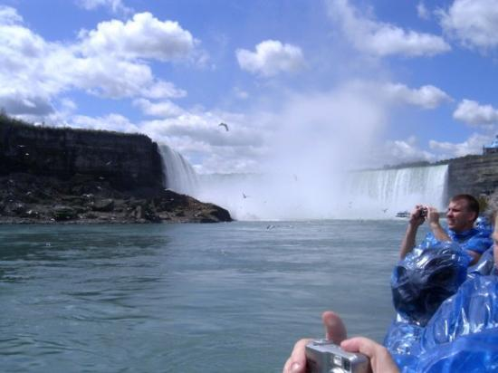 Niagara Falls, Canada: Niagara Fall  CANADA