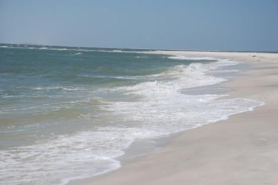 Dauphin Island Beach Picture Of