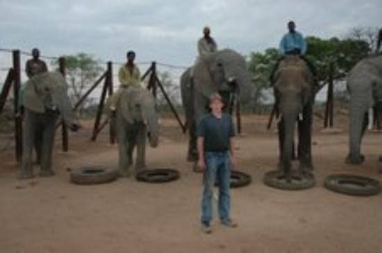West Nicholson, Zimbabwe: Training booma.