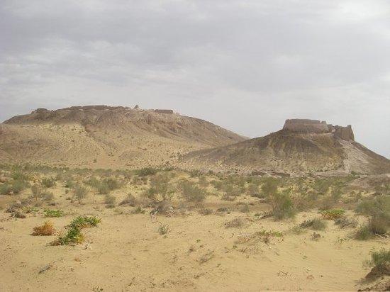 Herat Foto