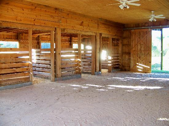 Country Manor Acres: interior of the party barn during the day