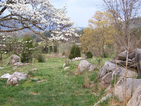 Country Manor Acres: inside the rock garden