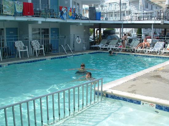سي جول موتل: a photo my wife took of the Sea Gull pool