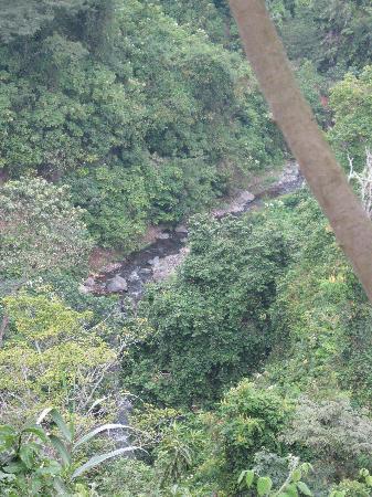 The river below the falls