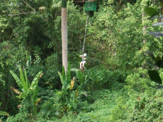 Batey Zipline Adventure: My 8 YO coming across