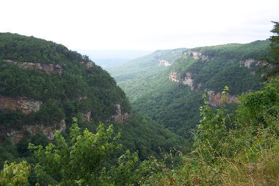 Cloudland Canyon State Park : View from the east rim.
