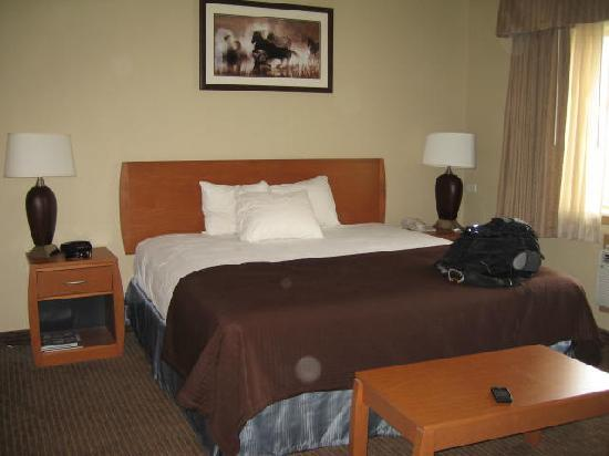 Quality Inn Madras: Newly remodeled rooms