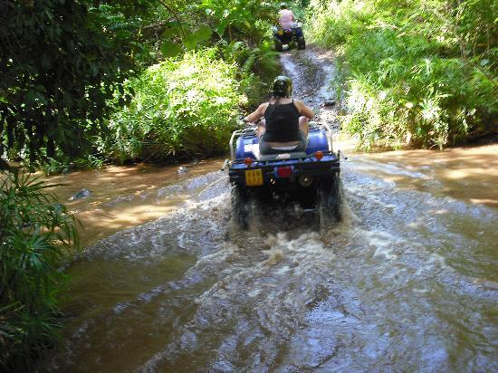 Rarotonga, Cook Islands: through a stream