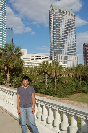 Tampa Picture