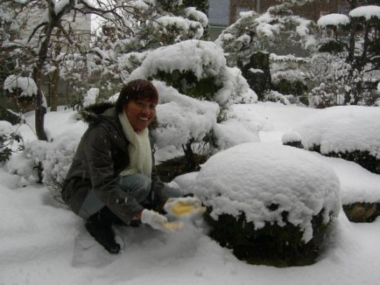 Bessho Onsen: my garden in winter 2008