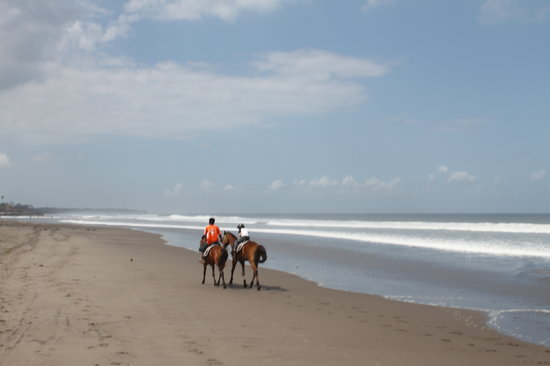 Bali Island Horse and ATV: children and beginners friendly