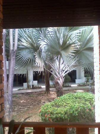 Green View Resort : hotel sympa