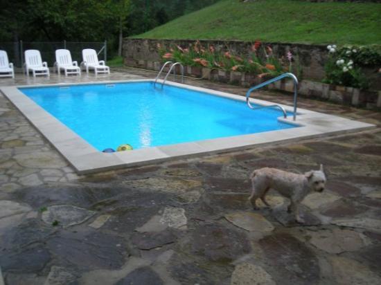 Palou, إسبانيا: No se quiso bañar en la piscina,le daba miedo...