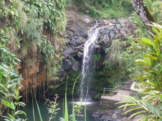 Annandale Falls: Anandale Falls