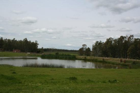 Durazno, Uruguay: The lake at my farm house.