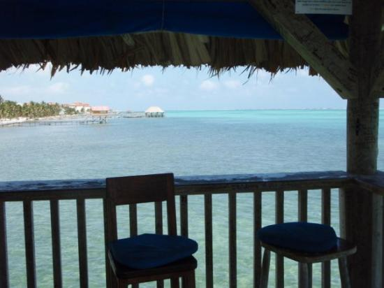 Ambergris Caye, Belize: Palapa Bar