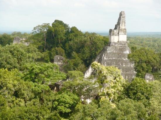 วิหารที่ 1: Tikal