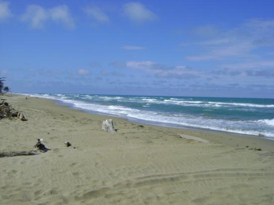 สาธารณรัฐโดมินิกัน: This beach is deserted untill the international kite surfing com... Cabarete
