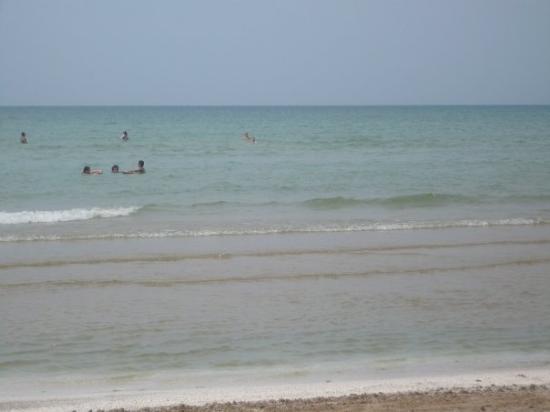 Sandbanks Beach, Trenton Ontario