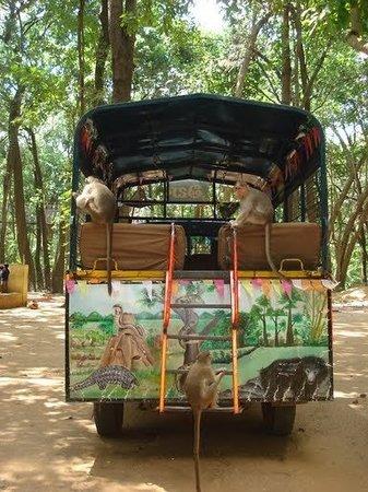Tirupati Foto