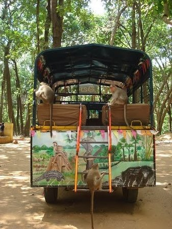 Tirupati-bild