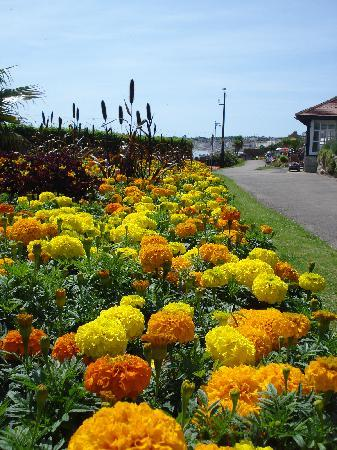 Γουέιμουθ, UK: Gardens alongside the Esplanade, Weymouth