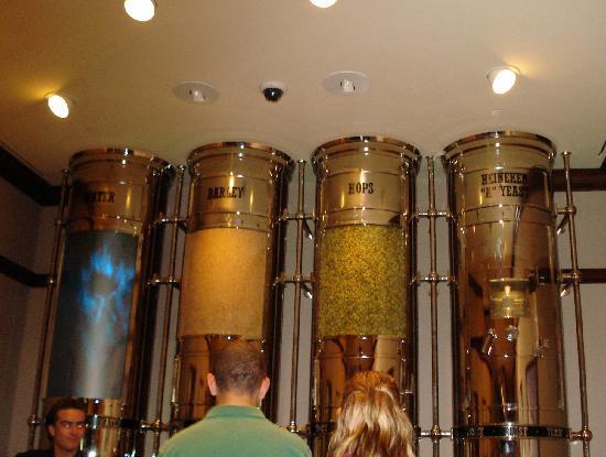 Heineken Experience: Ingredients used to brew Heineken