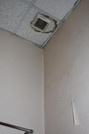 Royal Station Hotel: mouldy ceiling - royal mildew?