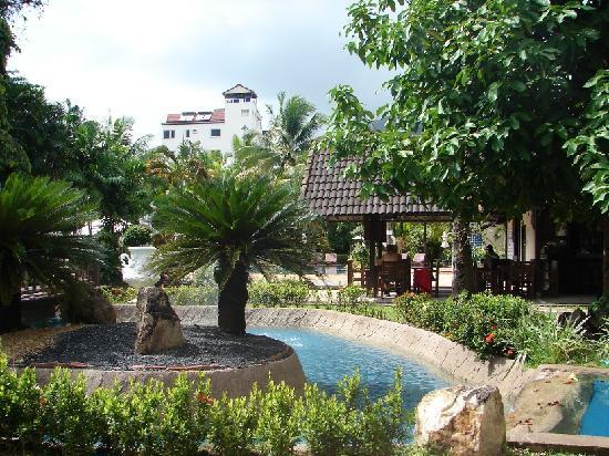 Patong Bayshore Hotel : Outside my Window