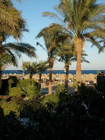 Ali Baba Palace: Vue sur la mer