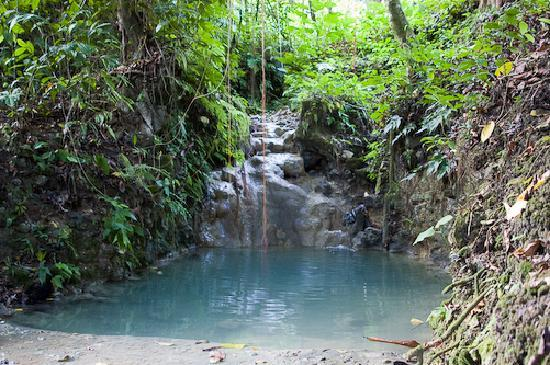 Jasmine Spa and Wellness: The fresh falls...WOW