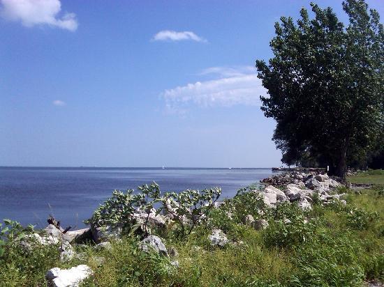 Lake Erie Metropark: Lake Erie