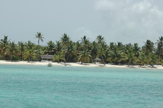 Isla Saona: Isla