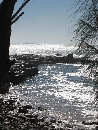 More Yamba Views